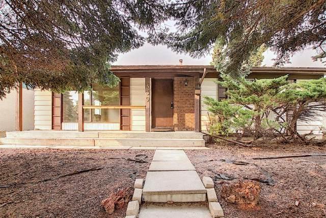 339 Manora Rise NE, Calgary, AB T2A 4S1 (#A1035417) :: Redline Real Estate Group Inc