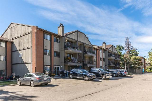 13045 6 Street SW, Calgary, AB T2W 5H1 (#A1035534) :: Redline Real Estate Group Inc