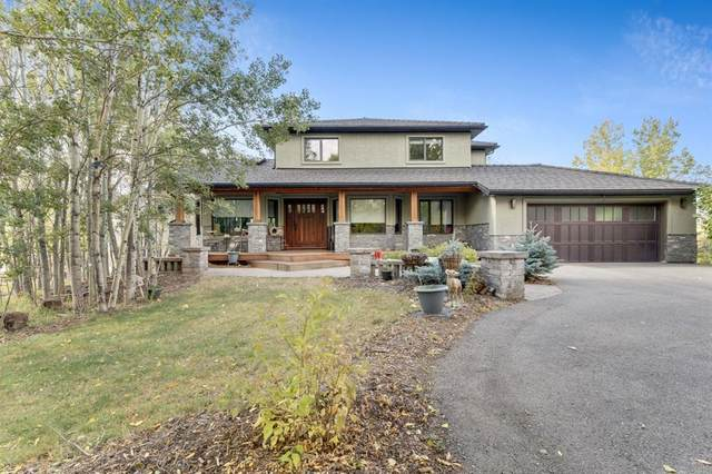 80111 Highwood Meadows Drive E, Rural Foothills County, AB T1S 4Y9 (#A1036332) :: Canmore & Banff