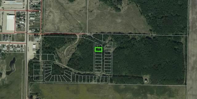 8 100 Plamondon Street, Plamondon, AB T0A 2T0 (#A1037647) :: Canmore & Banff