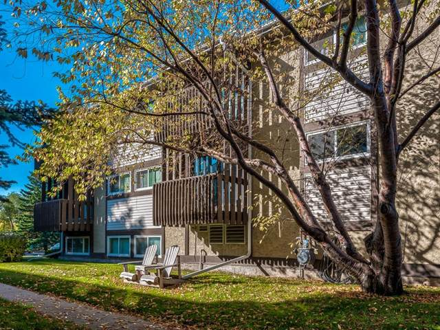 366 94 Avenue SE #10, Calgary, AB T2J 5P1 (#A1037773) :: Canmore & Banff