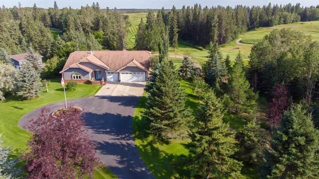 103 Wolf Close, Rural Ponoka County, AB T4J 1R3 (#A1038076) :: Western Elite Real Estate Group
