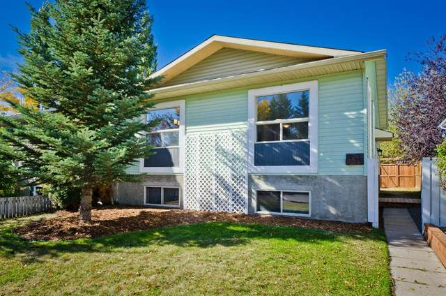 35 Green Meadow Crescent, Strathmore, AB T1P 1H4 (#A1038478) :: Canmore & Banff