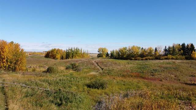 40 Big Hill Springs Estates, Rural Rocky View County, AB T3R 1H5 (#A1038507) :: Western Elite Real Estate Group