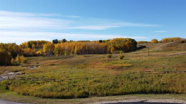 76 Big Hill Springs Estate, Rural Rocky View County, AB T3R 1H5 (#A1038514) :: Western Elite Real Estate Group