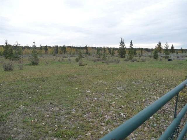 33052 Range Road 52 #27, Rural Mountain View County, AB T0M 1X0 (#A1038616) :: Canmore & Banff
