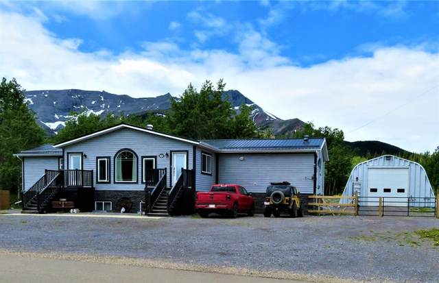 5214 48 Street, Cadomin, AB T0E 0E0 (#A1038719) :: Calgary Homefinders