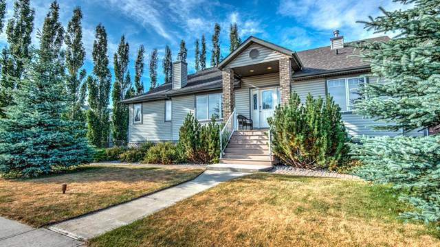 295 Hillcrest Boulevard N, Strathmore, AB T1P 1W2 (#A1038759) :: Canmore & Banff