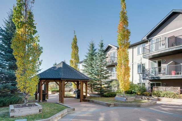 1727 54 Street SE #317, Calgary, AB T2A 1B7 (#A1039351) :: Canmore & Banff
