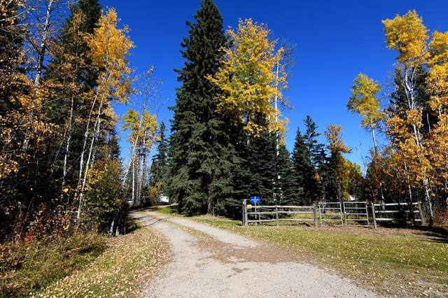 2 Spruce Park Drive, Rural Clearwater County, AB T0M 0M0 (#A1039657) :: Canmore & Banff