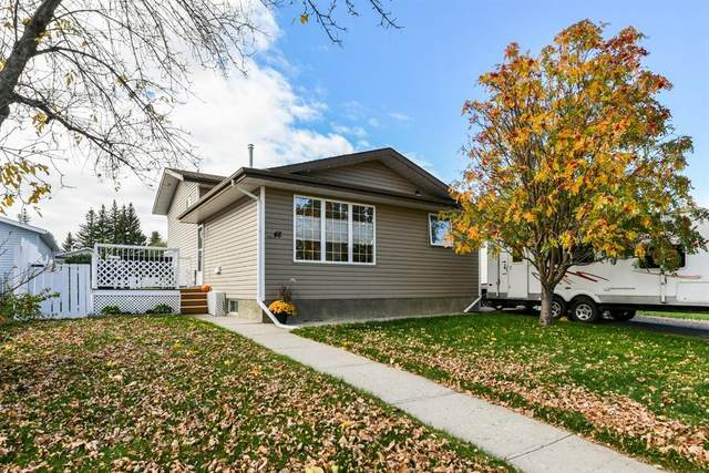 48 Strong Avenue SE, Medicine Hat, AB T1B 3L1 (#A1040573) :: Calgary Homefinders