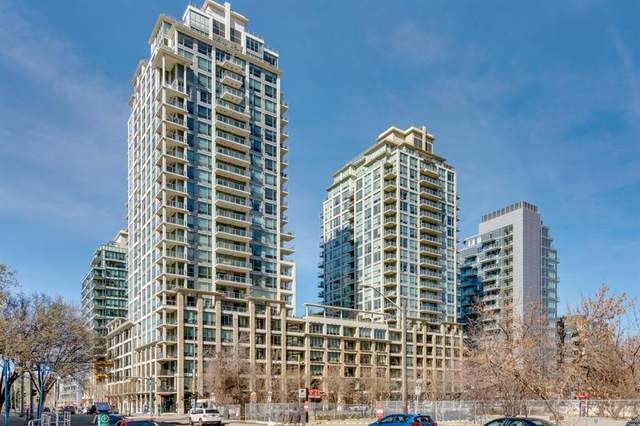 222 Riverfront Avenue SW #546, Calgary, AB T2P 4V9 (#A1041071) :: Western Elite Real Estate Group