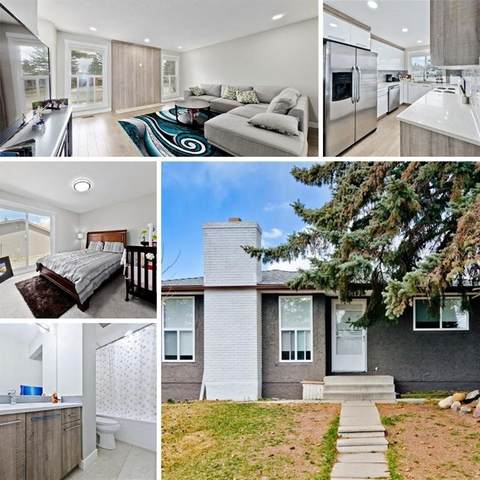 6415 Rundlehorn Drive NE, Calgary, AB T1Y 2B7 (#A1041720) :: Redline Real Estate Group Inc