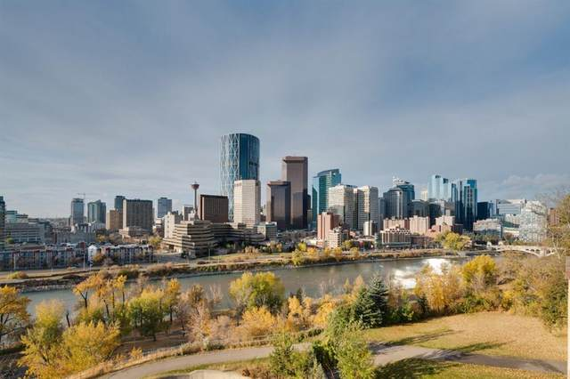 300 Meredith Road NE #503, Calgary, AB T2E 7A8 (#A1041740) :: Western Elite Real Estate Group