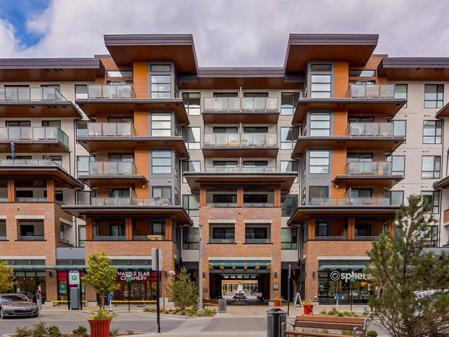 122 Mahogany Centre SE #318, Calgary, AB  (#A1041992) :: Canmore & Banff