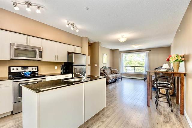 1740 9 Street NW #303, Calgary, AB T2M 0K3 (#A1042127) :: Canmore & Banff
