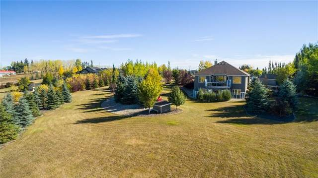 60064 282 Avenue E, Rural Foothills County, AB T1S 4P1 (#A1042213) :: Western Elite Real Estate Group