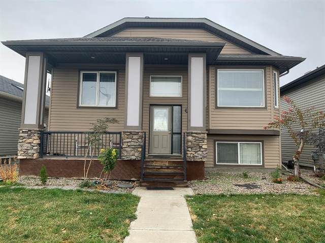398 Lettice Perry Road N, Lethbridge, AB T1H 5P1 (#A1042737) :: The Cliff Stevenson Group