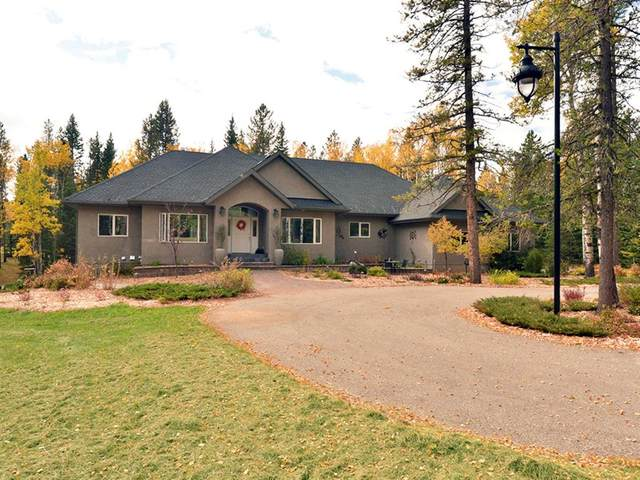 146220 371 Street W, Priddis, AB T0L 0K0 (#A1042973) :: Western Elite Real Estate Group
