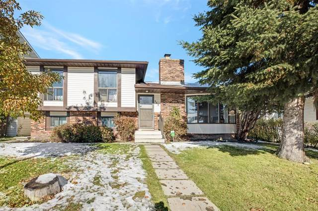 368 Templeview Drive NE, Calgary, AB T1Y 3W4 (#A1043378) :: Western Elite Real Estate Group