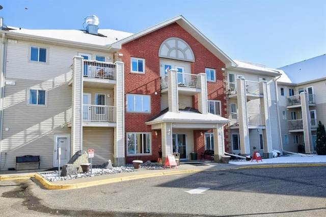 56 Carroll Crescent #206, Red Deer, AB T4P 3Y3 (#A1043531) :: Canmore & Banff