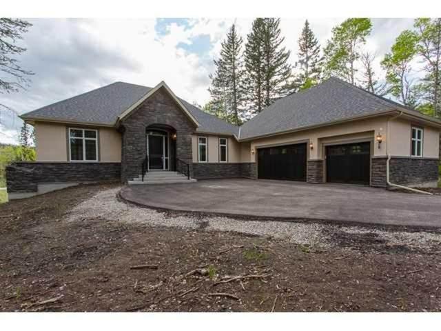 507 Hawk's Nest, Priddis Greens, AB T0L 1W0 (#A1043855) :: Canmore & Banff