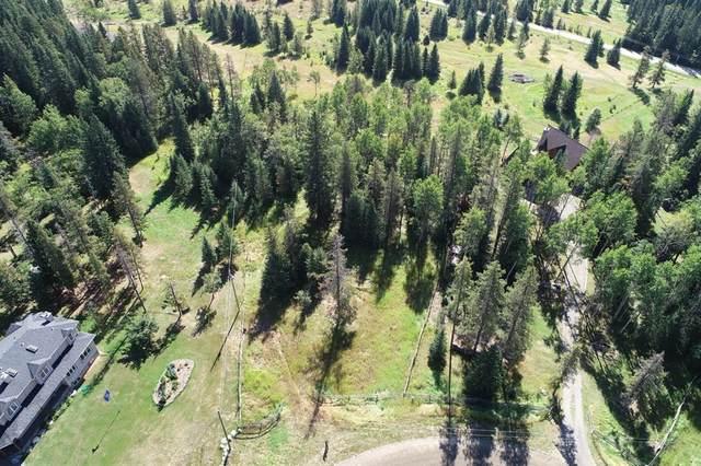 16 Pears Road, Rural Bighorn M.D., AB T4C 1C1 (#A1043868) :: Canmore & Banff