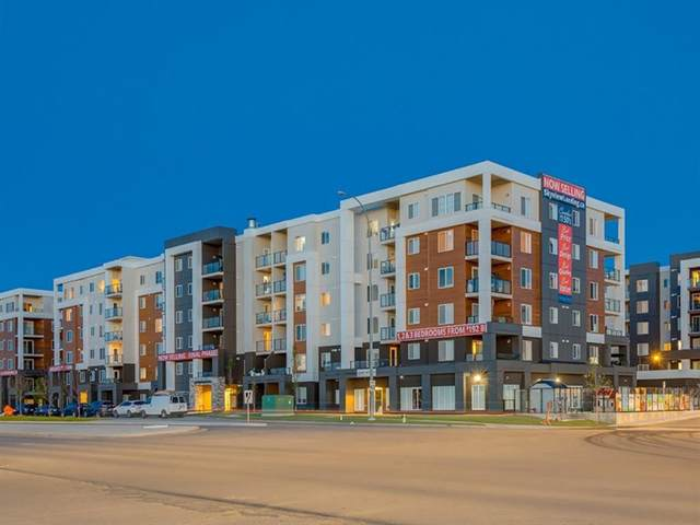 4641 128 Avenue #2209, Calgary, AB T3N 1T4 (#A1044017) :: Canmore & Banff