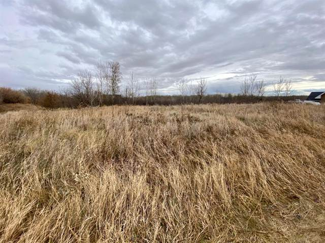 19518 Township Road 452 #117, Rural Camrose County, AB T4X 1X3 (#A1044280) :: Redline Real Estate Group Inc