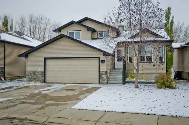 11 Aspen Circle, Strathmore, AB T1P 1R3 (#A1044283) :: Calgary Homefinders