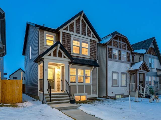 56 Skyview Point Crescent NE, Calgary, AB T3N 0M1 (#A1045554) :: Canmore & Banff