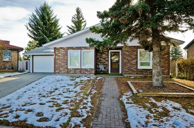 221 Thornbriar Green, Strathmore, AB T1P 1C4 (#A1045710) :: Calgary Homefinders