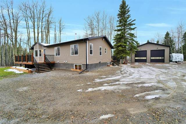 413065 Range Road 6-3, Rural Clearwater County, AB T4T 2A1 (#A1046632) :: The Cliff Stevenson Group