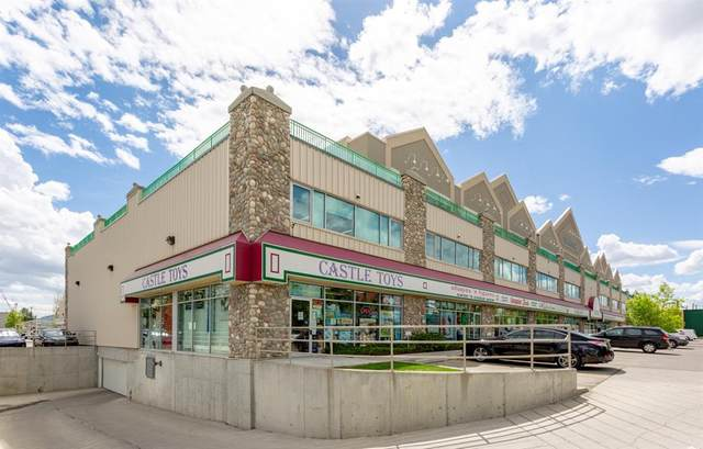 5718 1A Street SW #204, Calgary, AB T2H 0E8 (#A1046954) :: Canmore & Banff