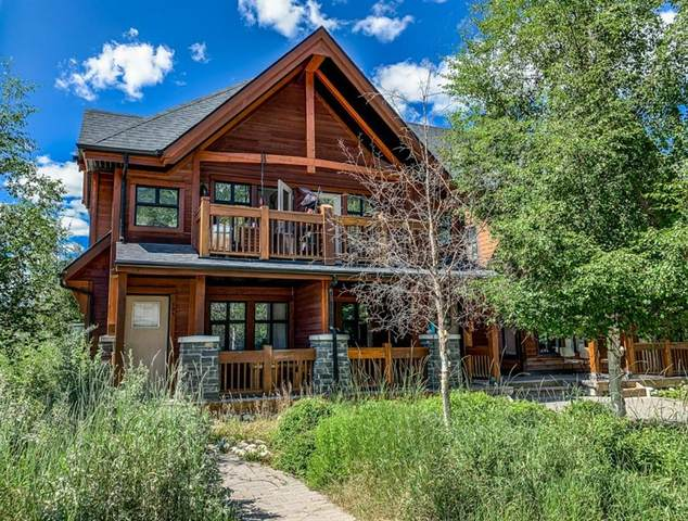 201 Muskrat Street #204, Banff, AB T1L 1A1 (#A1049075) :: Canmore & Banff