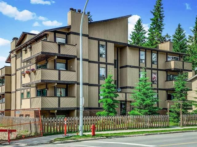 401 Marten Street SW #10, Banff, AB T1W 1E3 (#A1049910) :: Canmore & Banff