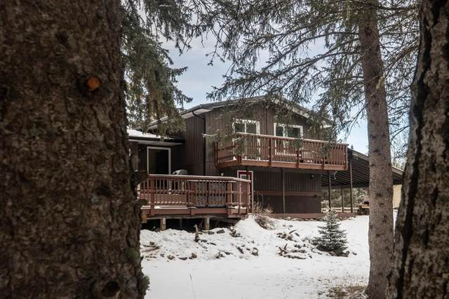 31 Echlin Drive, Bragg Creek, AB T0L 0K0 (#A1050326) :: Redline Real Estate Group Inc