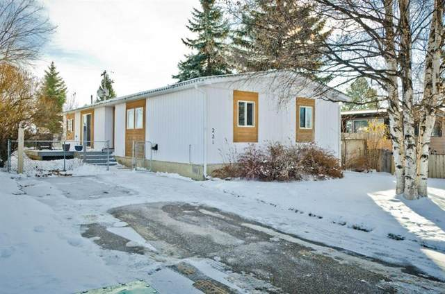 231 Brentwood Drive, Strathmore, AB T1P 1C9 (#A1050439) :: Redline Real Estate Group Inc