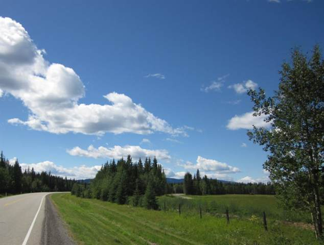 48 Boundary Close, Rural Clearwater County, AB T0M 0M0 (#A1050682) :: Calgary Homefinders