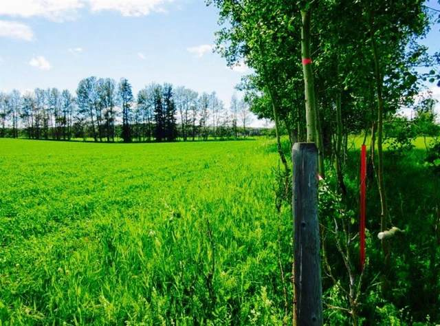 Highway 584 6337, Sundre, AB T0M 1X0 (#A1050915) :: Redline Real Estate Group Inc