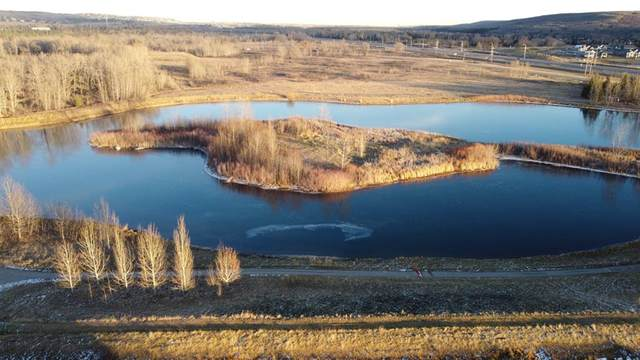 328 Clearwater Cove, Rural Rocky View County, AB T3Z 3T8 (#A1051392) :: Redline Real Estate Group Inc