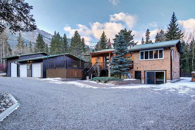 41 Heart Road, Lac des Arcs, AB T1W 2W3 (#A1051403) :: Canmore & Banff