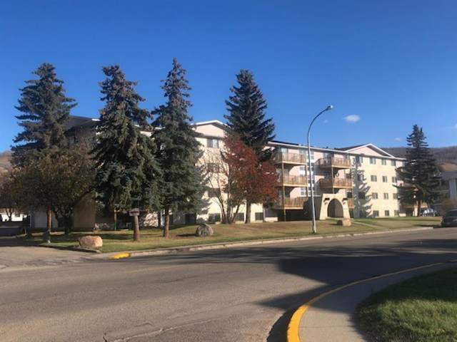 7801 98 Street #312, Peace River, AB T8S 1S4 (#A1052497) :: Redline Real Estate Group Inc