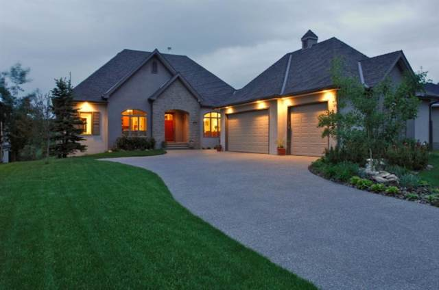 207 Diamond Willow Point, Rural Rocky View County, AB T3Z 2Z5 (#A1053173) :: Redline Real Estate Group Inc