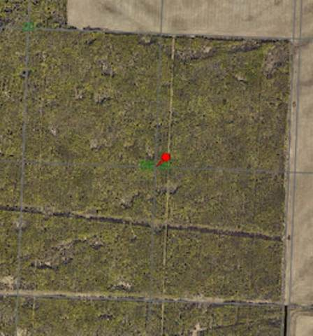 6-11-82-SE20, Rural Saddle Hills County, AB T0H 3G0 (#A1053505) :: Redline Real Estate Group Inc