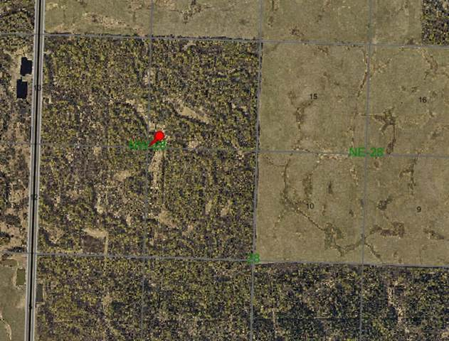 6-8-82-NW28 Highway, Rural Saddle Hills County, AB T0H 3G0 (#A1053900) :: Redline Real Estate Group Inc