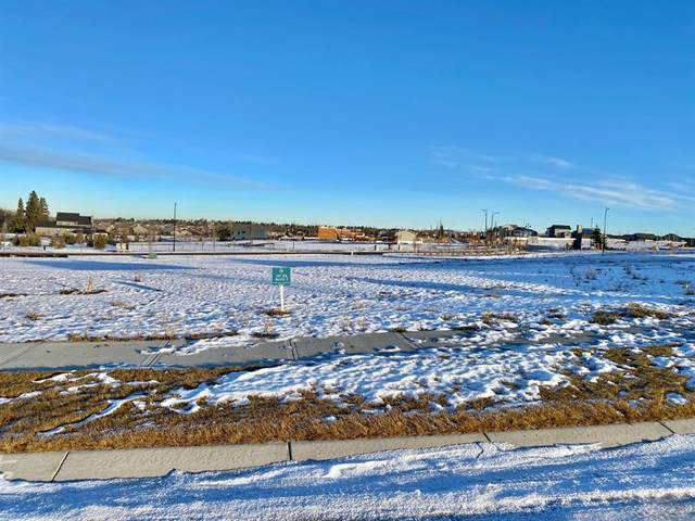 3 Sweetgrass Place, Sylvan Lake, AB T4S 0S5 (#A1054490) :: Redline Real Estate Group Inc