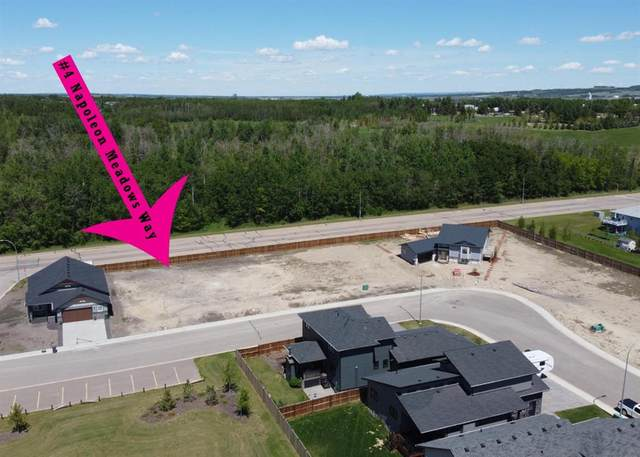 4 Napoleon Meadows Way, Innisfail, AB T0M 1A0 (#A1055913) :: Redline Real Estate Group Inc