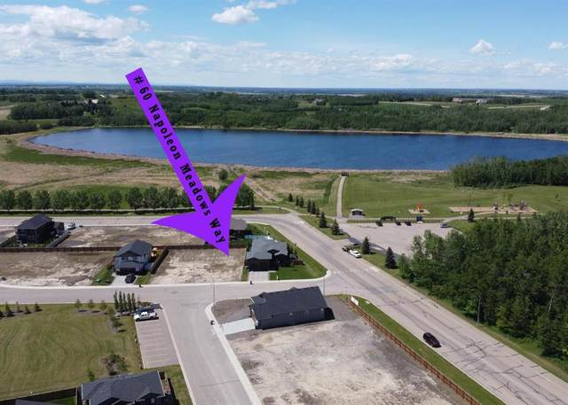 60 Napoleon Meadows Way, Innisfail, AB T0M 1A0 (#A1055929) :: Redline Real Estate Group Inc