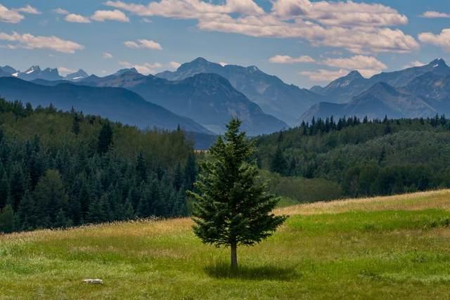 27 Carraig Ridge, Rural Bighorn M.D., AB T0L 1N0 (#A1056231) :: Canmore & Banff